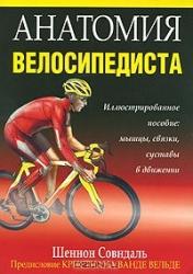 Анатомия велосипедиста
