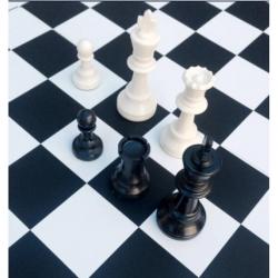 Шахматы турнирные профессиональные